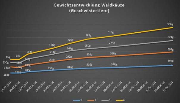 waldkaeuze_Gewichtsentwicklung